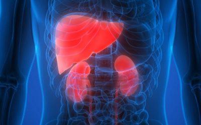 Particularităţi ale hepatitelor cronice virale la pacienţii cu boală cronică de rinichi