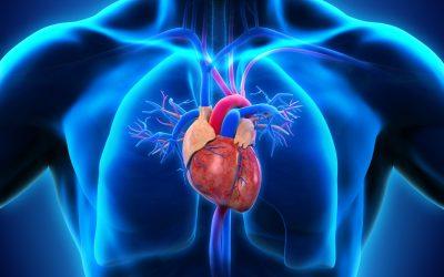 Hipertensiunea arterială rezistentă