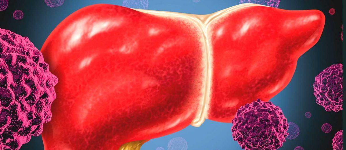 Prima moleculă capabilă să elimine virusul hepatitic B din celula hepatică