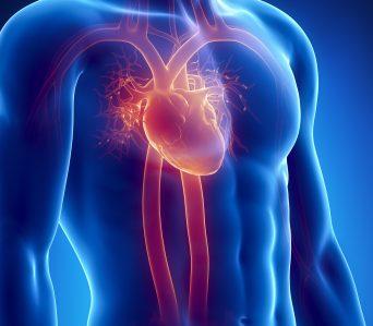 Insuficiența cardiacă – între specialităţi