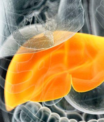 O nouă moleculă împotriva diabetului zaharat de tip 2 și a bolii ficatului gras non-alcoolic