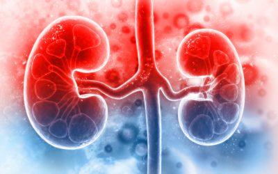Anemia din boala cronică de rinichi